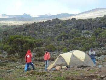 Kilimanjaro_12_11 391